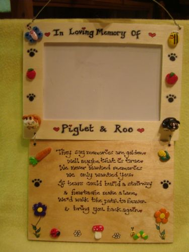 Pet Memorial Photo Frame & In Memory Of Verse Poem  Plaque Sign Handmade Cat Dog Rabbit Guinea Pig Leopard Gecko Bearded Dragon